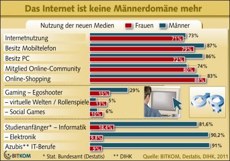 Grafik der Bitkom zur Internetnutzung